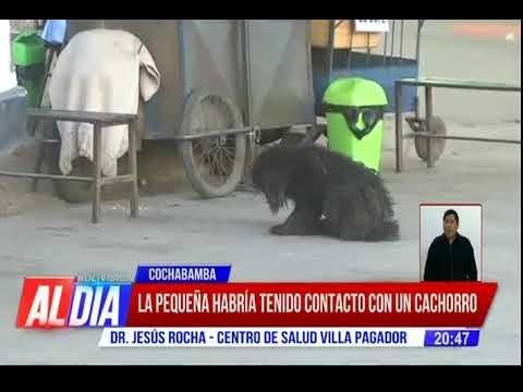 Una niña murió en Cochabamba, ¿fue por rabia