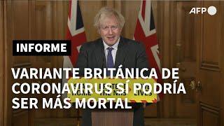 Variante británica del coronavirus apunta a una mayor mortalidad | AFP