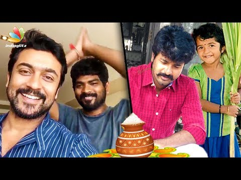 connectYoutube - Surya, Vignesh Shivan , Sivakarthikeyan and more Celebs Celebrate Pongal 2018 | Tamil Cinema News