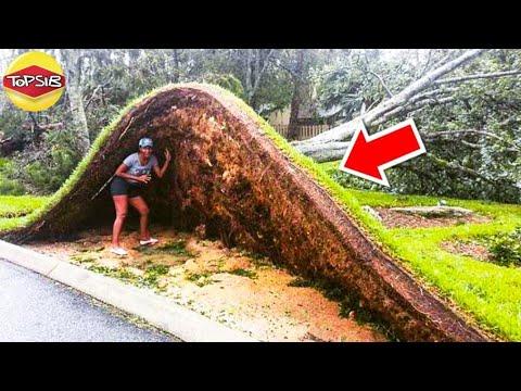 เหตุการณ์ภัยธรรมชาติน่าสะพรึงก