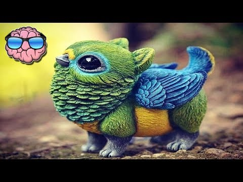 Top 10 AMAZING ANIMALS You Won't Believe Exist