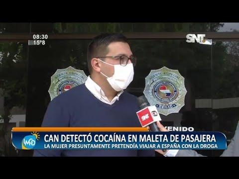 Alerta aeropuerto: Can antidrogas detectó cocaína en maleta de pasajera