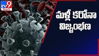 Kerala to Tamil Nadu travel will need COVID 19 negative report - TV9 - TV9