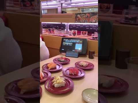 ชากัญชงกับชูชิเปิดวันแรก