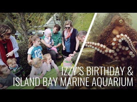 Island Bay Marine Aquarium & Izzy's 2nd Birthday