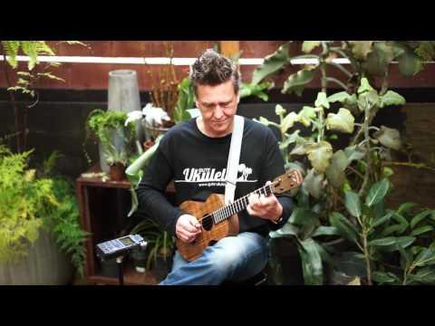 Blackbird Sessions featuring Andreas David- Devils Dream