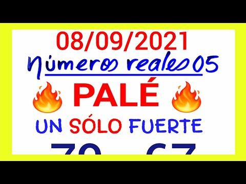 NÚMEROS PARA HOY 08/09/21 DE SEPTIEMBRE PARA TODAS LAS LOTERÍAS...!! Números reales 05 para hoy....!