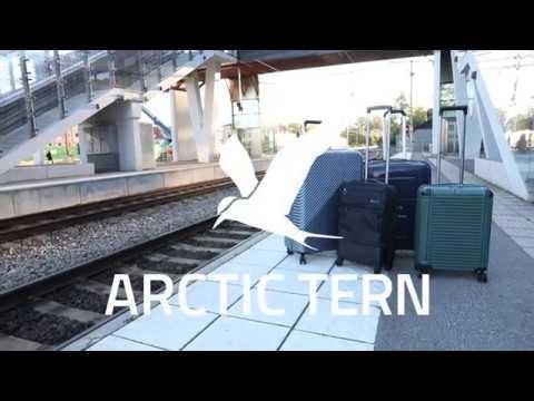 ARCTIC TERN TRAVEL TROLLEY