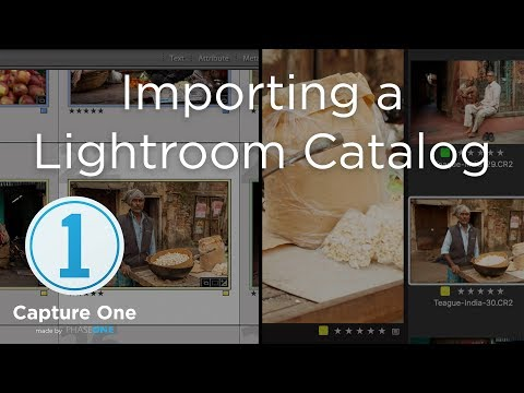 Importing a Lightroom Catalog | Tutorial | Capture One 12