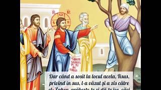 Duminica a 32-a dupa Rusalii (a lui Zaheu)