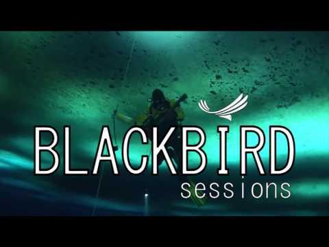 Blackbird Sessions- Deep River Blues