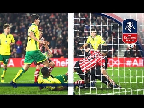 Southampton 1-0 Norwich City (Replay) Emirates FA Cup 2016/17 (R3) | Goals & Highlights