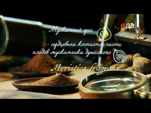 Специи | Мускатный орех