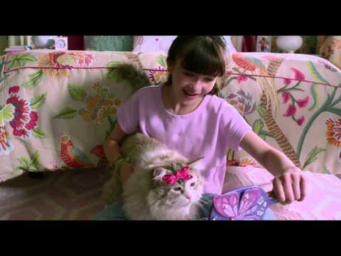 Siete vidas - Trailer español (HD)