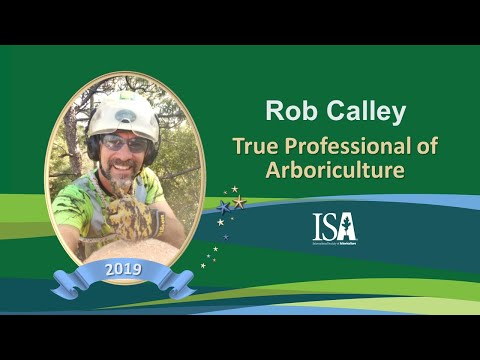 2019 True Professionals | Rob Calley