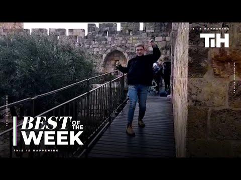 Best of the Week: NOVEMBER - Week 3