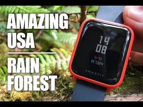 Best Smartwatch under $100 tested in a USA Rainforest