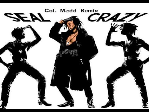 Seal Crazy Col. Madd Remix - An Amiga Module