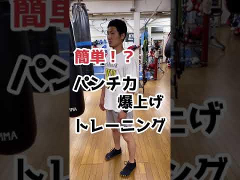 【#short】パンチ力向上トレーニング