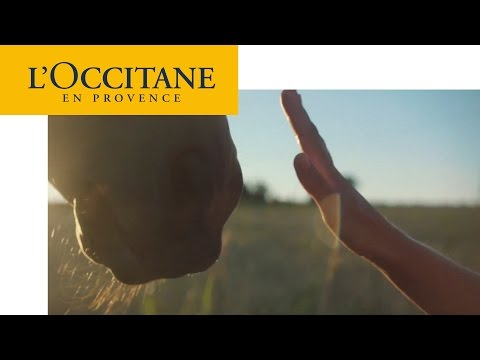 Touching – Shea Butter Hand Cream | L'Occitane