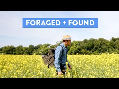 Foraged + Found | Alan Bergo