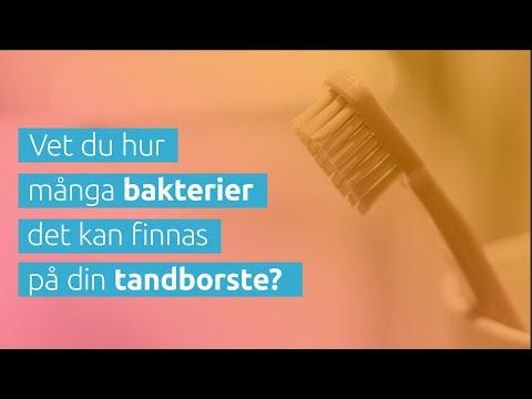 Fira tandborstbytardagen