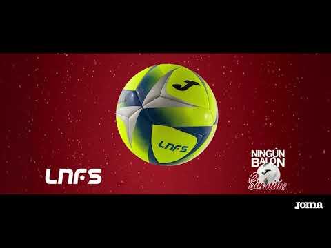 JOMA, ElPozo Murcia Costa Cálida y la LNFS han donado 100 balones oficiales a la Fundación Fundown