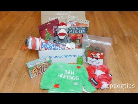 December 2019 Holiday Pooch Perks Subscription Box Unboxing