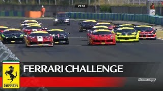 Ferrari Challenge Europe – Budapest 2017, Coppa Shell Race 2