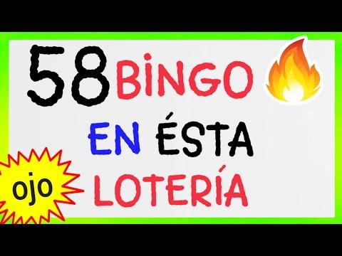SORTEOS loteria NEW YORK (( 58 )) BINGO HOY/ NÚMEROS que más SALEN éste MES/ Resultado de LOTERÍAS
