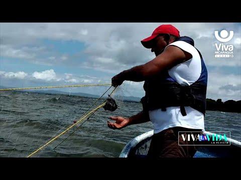 Experimenta  un paseo en lancha y pesca artesanal en San Jorge