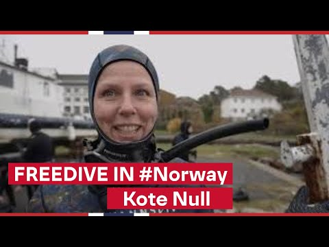 Quirky Docs from Norway | Kote Null