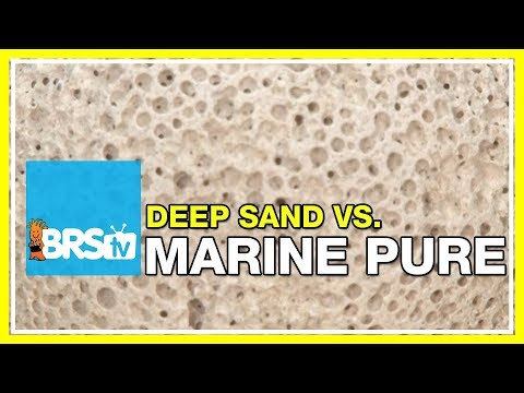 FAQ #20: Why use MarinePure for filtration VS deep sand beds? | #52FAQ
