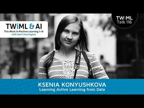 Ksenia Konyushkova Interview - Learning Active Learning from Data
