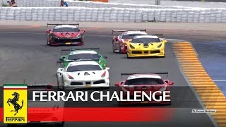 Ferrari Challenge Europe – Valencia 2017, Trofeo Pirelli Race 2