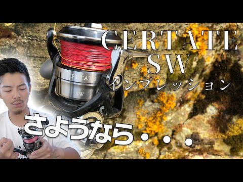 セルテートSW3ヶ月使用徹底レビュー!【インプレッション】