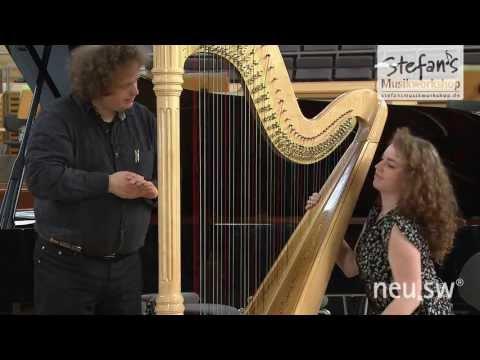 Die Harfe mit Lana del Rey's Videogames und Maud Edenwald erklärt von Stefans Musikworkshop
