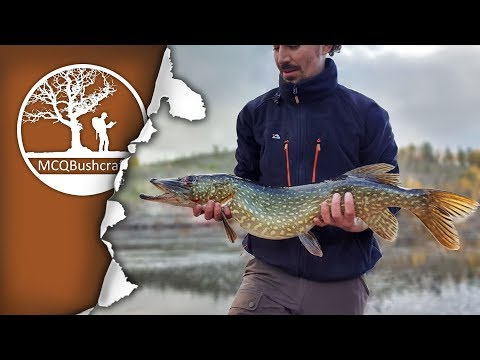 Catching & Cooking Northern Pike over a Campfire