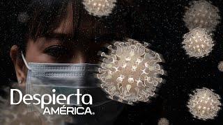 ¿El virus se está adaptando a los humanos Los médicos responden | Dr. Juan