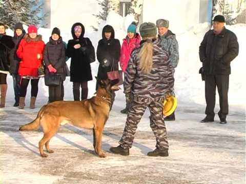 «Cтуденческий десант» Томского аграрного колледжа посетил Центр профессиональной подготовки УМВД