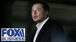 'Green Eggs & SPAC': Elon Musk's tweet creates confusion