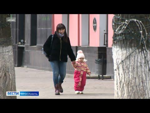 В Ярославской области важным считают закрепление в главном документе страны поддержку детей