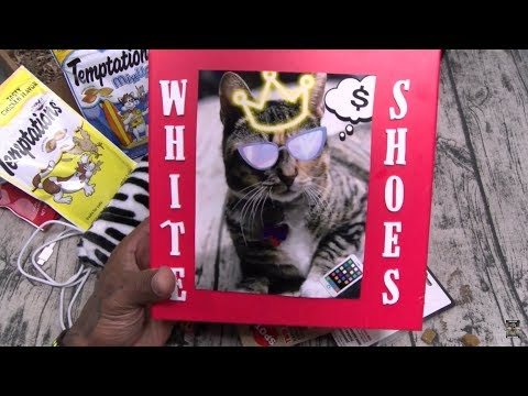 Xerxes Birthday Special - The Cat Party