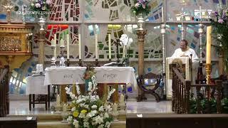 Santa Misa desde Parroquia Sta. Teresa de Ávila 20/05/2020