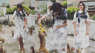 Actress Sony Charishta Fed Bananas To Monkeys | IG Telugu - IGTELUGU