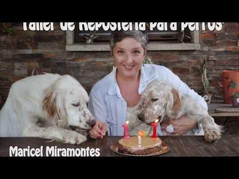 Repostería para perros con Thermomix ® y Apadan
