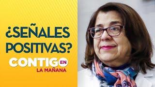 """Rosa Oyarce sobre cifras Minsal: """"Es porque se disminuyeron los testeos"""" - Contigo en La Mañana"""