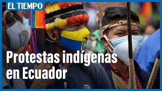 Indi?genas de Ecuador piden recuento de votos