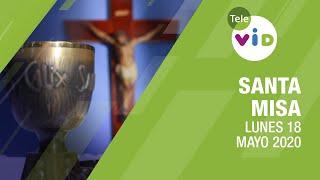 Santa misa de hoy ? Lunes 18 de Mayo de 2020, Padre Fray Luis Enrique Orozco - Tele VID
