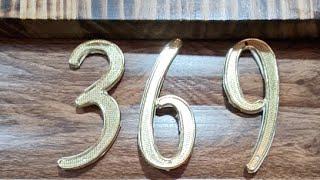 369 DE TESLA GATICO VIP#1  22.01.2021